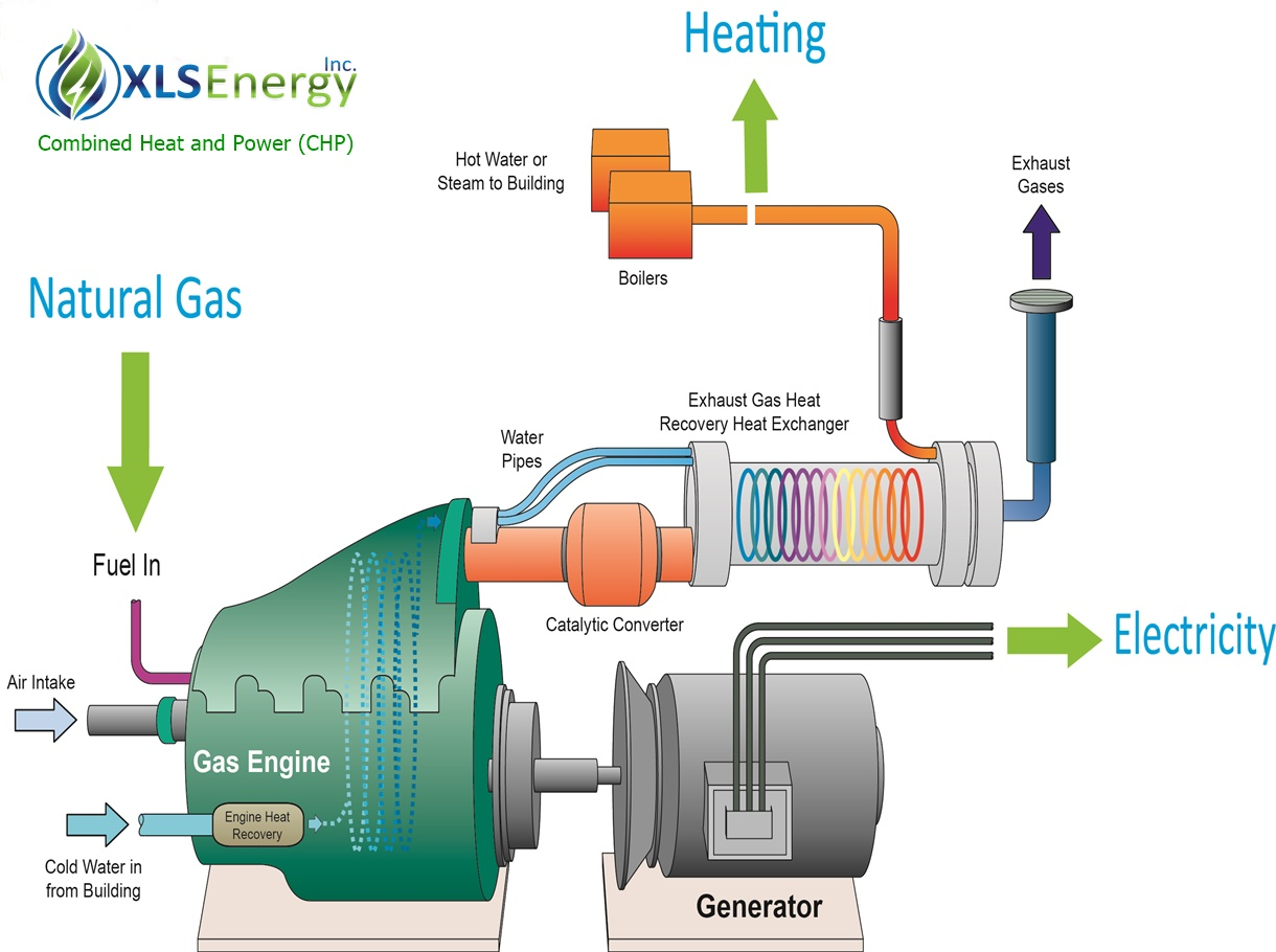 XLS Energy CHP